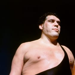 Andre the Giant stares down Hulk Hogan prior to a 1987 match in Pontiac, Michigan.