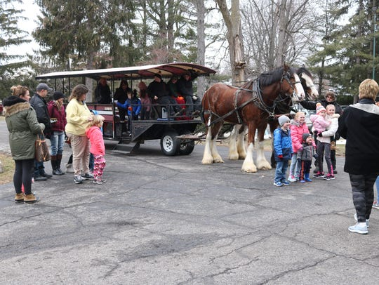 Families take photos with the South Creek Clydesdales
