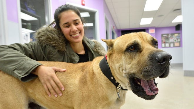 Suzette Quiros is reunited with her dog, Playu, at the St. Hubert's Animal Welfare Center in Madison on Sunday, Jan. 28, 2018.