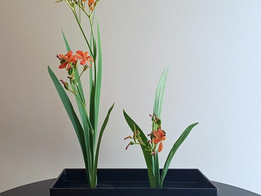 Crafts Ikebana (4)
