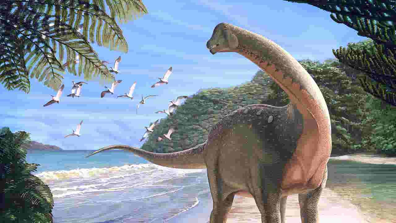 holy grail of dinosaur fossils discovered in egypt desert