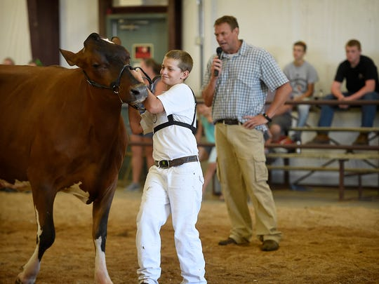 The Dairy Cow competition took place at the 2017 Lebanon Area Fair Monday, July 24.