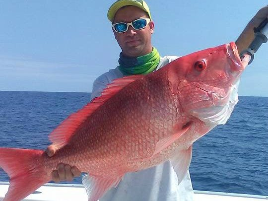 A 26-pound genuine red snapper was caught aboard Capt. Richard Hunt's Little Adam charters in May in 75 feet of water off Fort Pierce Inlet. The red snapper was released since they are prohibited from harvest by the National Marine Fisheries Service because of overfishing.