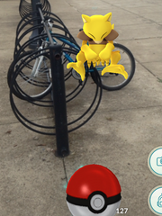 The Pokemon GO game allows players to catch different