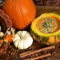 <modify_2>Nutritious Spicy Pumpkin Coconut Bisque freezes well. <137>— if there happens to be leftovers.<137></modify_2>