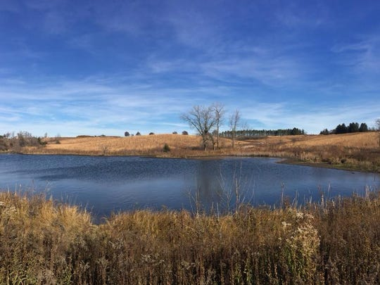 A lake on the western edge of F.W. Kent County Park is shown on Nov. 20, 2017.
