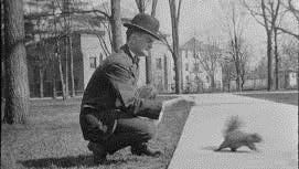 In 1897, an ordinance was passed protecting squirrels in the city of Sheboygan, and in 1898, 48 squirrels were purchased and released in Fountain and Sheridan Parks.