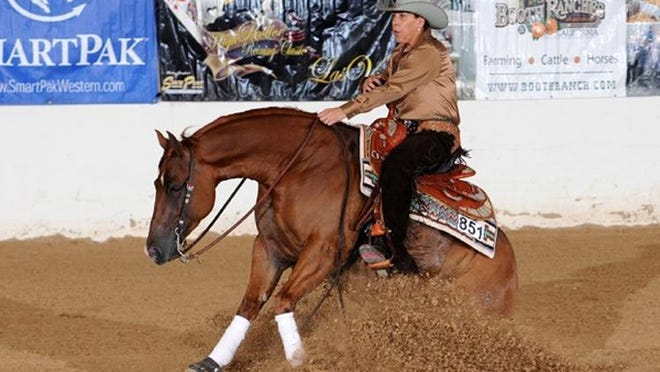 A horse is brought to a sliding stop in the sport of horse reining.