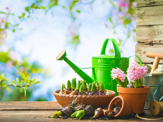 Gardening tools and spring flowers on the terrace in