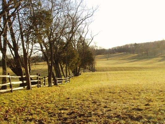-murphy hay fields 3.jpg_20100223.jpg