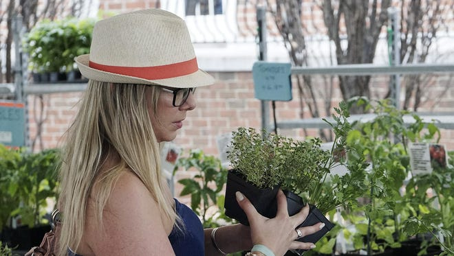 Kristen Bye selects herbs at the market.
