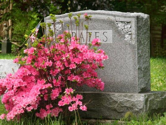 636138719876960239-stock-headstone.jpg