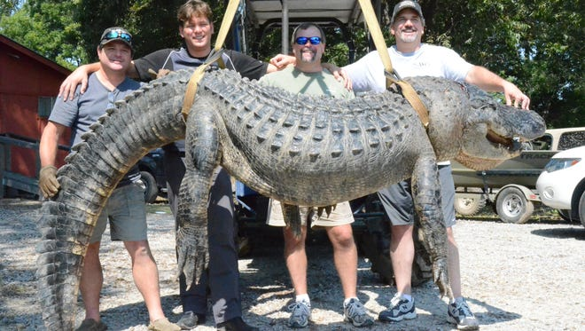 The World News Daily Report revealed that this Mississippi gator pre-dated the American Civil War...not.
