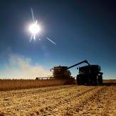 South Dakota agriculture organizations support new farm bill