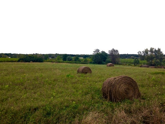 Passing through scenic country roads in Burdett.