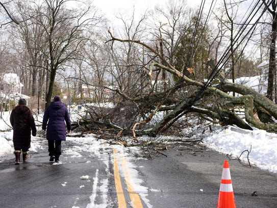 A downed tree rests on power lines, blocking Hillcrest