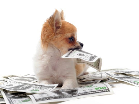 a dog and three dollars by How can a kid raise 400 dollars in three weeks  what i can suggest is adopting a dog rather than an 8 week old puppy, you can get a young dog 6 months .