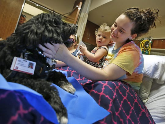 Carly Gross (right) and Harper Young visit with Lily, a Portuguese water dog, at Indiana University Health North on Aug. 12, 2016. Carly is a patient at the hospital, and Lily is a certified therapy dog.