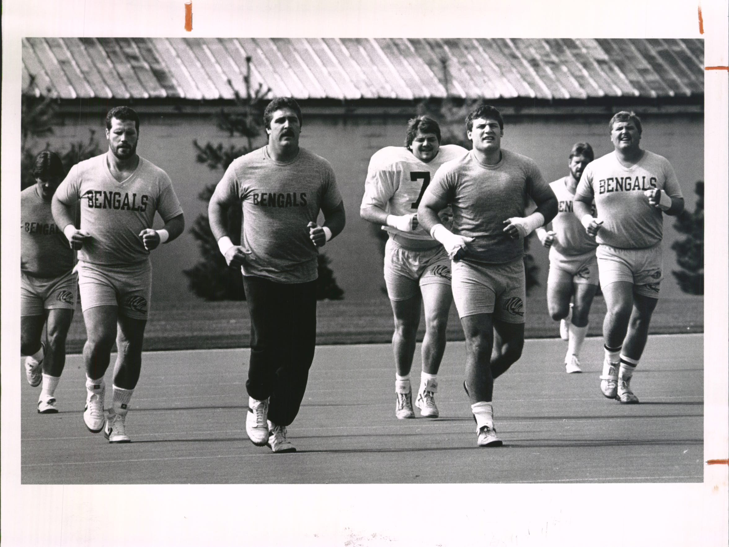 Bengals regulars returned to Spinney Field Monday and got in some jogging after a 2 p.m. meeting. From left are Joe Walter, David Douglas, Tim Krumrie, Bruce Kozerski and Brian Blados.