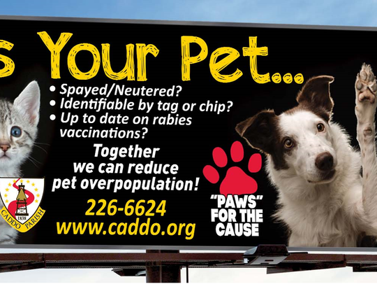 A billboard that is part of a Caddo Parish campaign