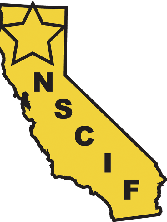 NorthernSectionlogo.png