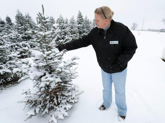 Christmas Tree Cost_Wils (5).jpg