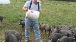 John Backes feeds the piglets at Circle B Ranch. They operate a closed herd meaning they breed, farrow and raise all their hogs. The breeding is completely genetically controlled to avoid inbreeding.