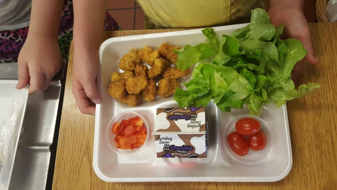 Farm-to-school food teaches kids healthful eating habits and more.