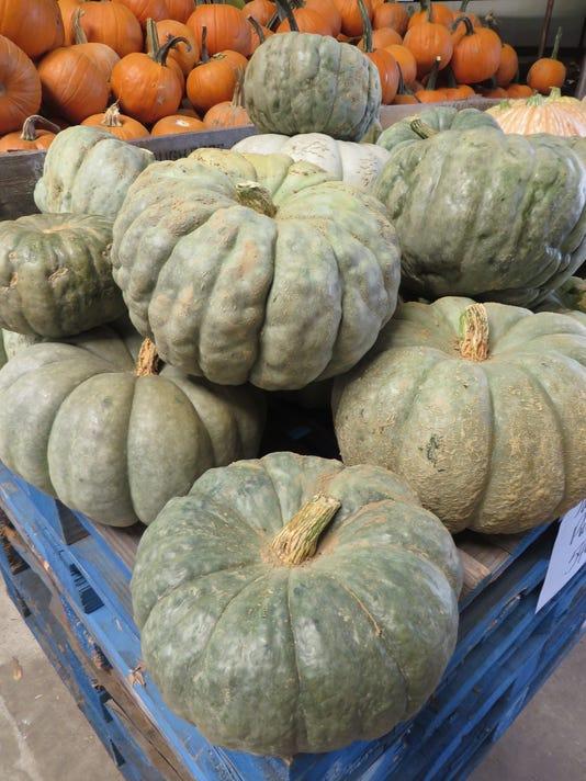 Jarrahdale-pumpkins-at-Bailey-s-Market.jpg