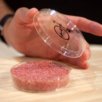 A burger made from cultured beef, which has been developed by professor Mark Post of Maastricht University in the Netherlands.
