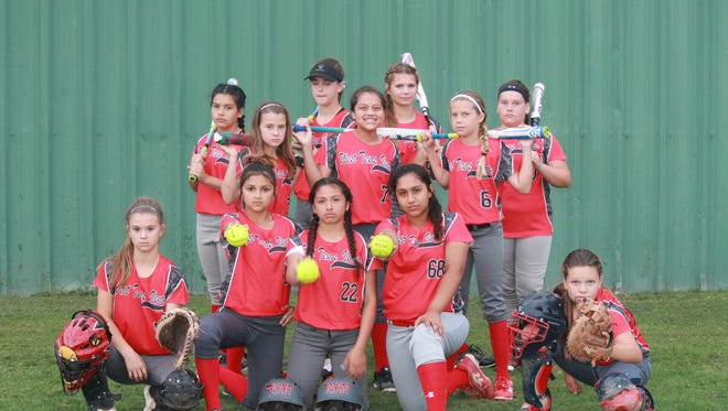 The West Texas Venom 12u fast pitch softball team will compete at nationals next month in Orlando, Florida.