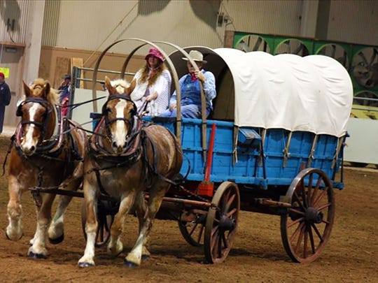 Rhonda Carbaugh of Greencastle competed with a team ofher grandfather's Belgians.