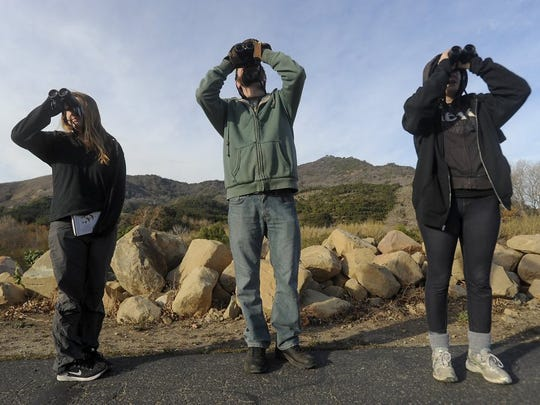 Go bird watching and help restore a riparian preserve.
