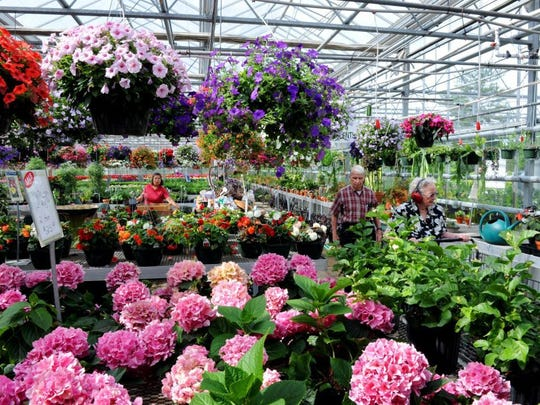 Stanley's Greenhouses in Knoxville