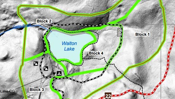 Blocks 2, 3 and 4 in the above map of Walton Lake are targeted for thinning.