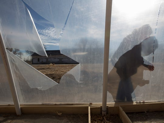 Caroline Padilla, an administrative assistant at the Healing Drop In Center, on Thursday shows the damage done by vandals to a greenhouse near the center in Shiprock.