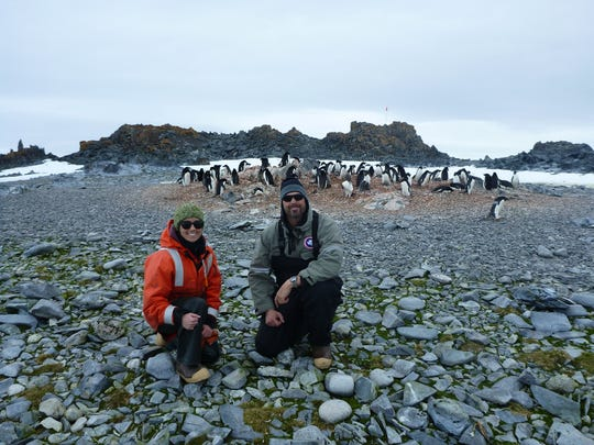 Megan Cimino and Matthew Oliver are shown with Adeliepenguins in Antarctica. They are tracking krill — the patches of food Adelies depend on for survival. The project builds on earlier research that looked at the connection between weather and weight gain in baby birds.