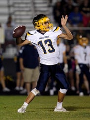 Nolan Bird and Grand Ledge will try to make another deep run in the Division 1 playoffs.
