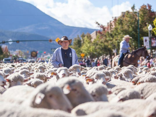 636133527084186802-CC-1029-Sheep-Parade-23.jpg