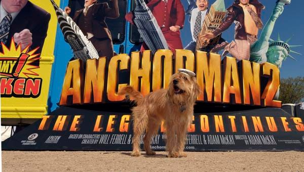 """Baxter, the four-legged star of the blockbuster hit comedy """"Anchorman 2: The Legend Continues"""", poses in front of the world's first combination news/food truck at SXSW in Austin, Texas, Tuesday, March 11, 2014, in celebration of the film's digital debut.  The """"AnchorVan"""" will make stops throughout the country en route to it's final destination in New York City on April 1st for the Blu-ray arrival of the film."""