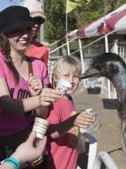 Jennifer Brossart, of Globe, feeds an emu, during last year's Chandler Ostrich Festival at Tumbleweed Park on March 12, 2016.