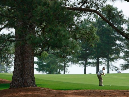 Masters Eisenhower tree