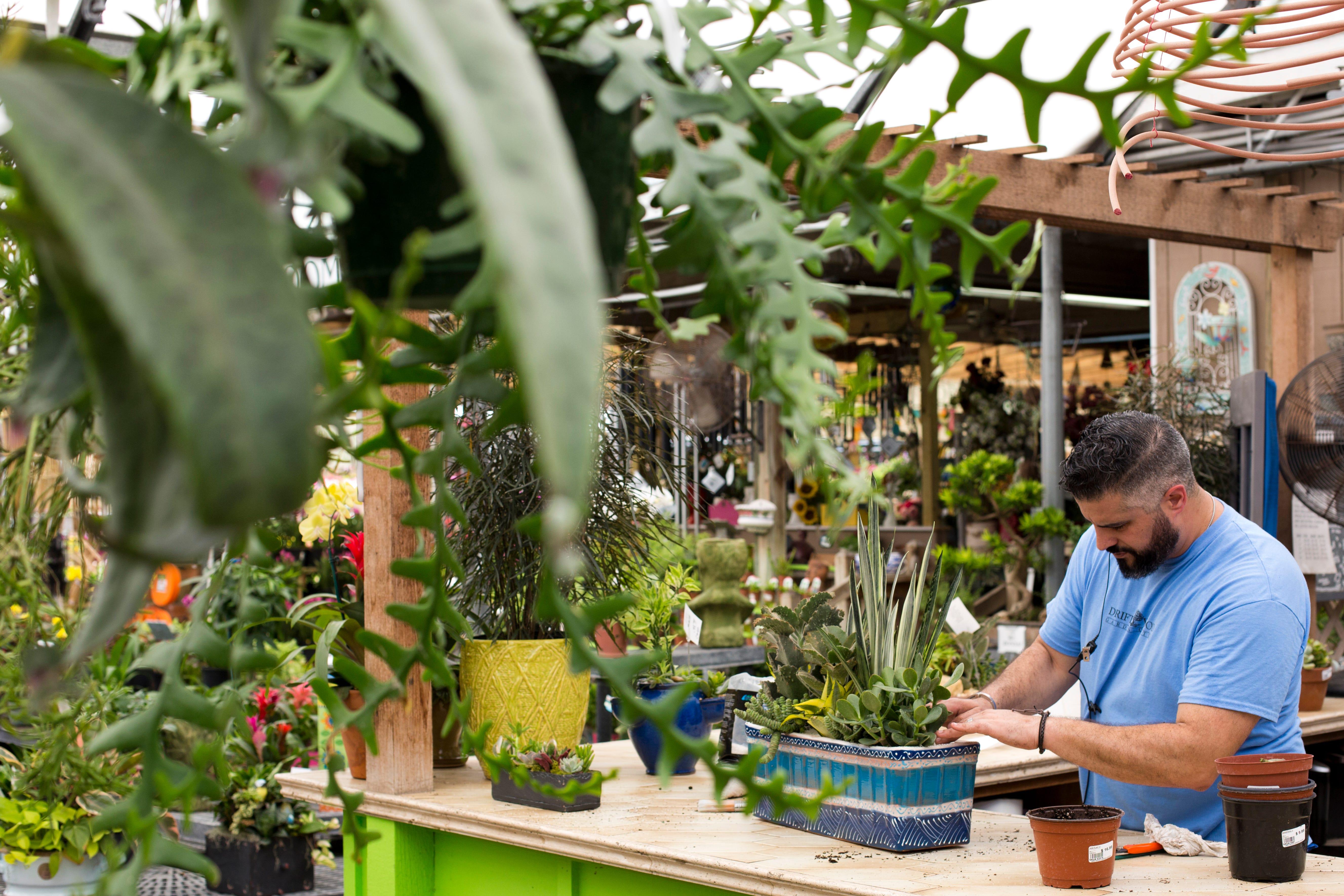 High Quality Garden Designer Michael Alfonso Prepares A Succulent