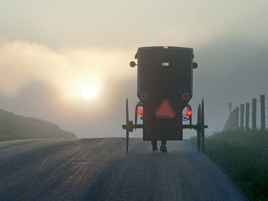 Into the Morning Fog