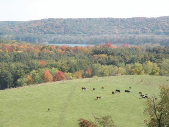 Scenic view from Malabar Farm State Park