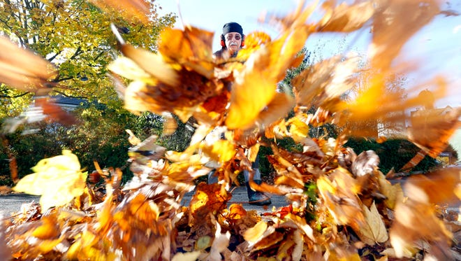 The use of leaf blowers has been debated for years in Palm Springs.