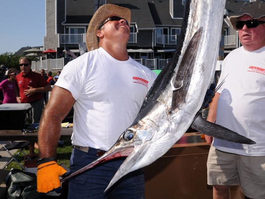 A white marlin caught aboard the Amanda Sue is weighed