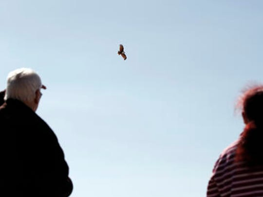 In this Aug. 17, 2016 photo, Adrian Davies, left, and Thelma Davis watch as an eagle flies past a memorial for Lynette Daley, on Ten Mile Beach near Yamba, Australia. Daley's family believes the eagle represents her spirit. The brutal death of Daley, an Aboriginal woman, and the reluctance of officials to prosecute the white suspects, has highlighted a deadly racial divide in Australia, where Indigenous people remain the most disadvantaged segment of society.