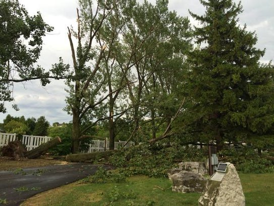 Downed trees blocking the entrance to Frank E. Murphy