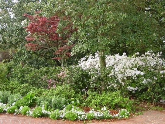 New Orleans Botanical Gardens